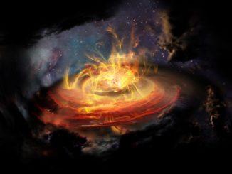 Künstlerische Darstellung von chaotischen Magnetfeldlinien in der Nähe eines gerade entstehenden Protosterns. (Credit: NRAO / AUI / NSF; D. Berry)