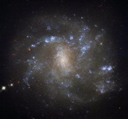NGC 2500, aufgenommen vom Weltraumteleskop Hubble. (Credits: ESA / Hubble & NASA)