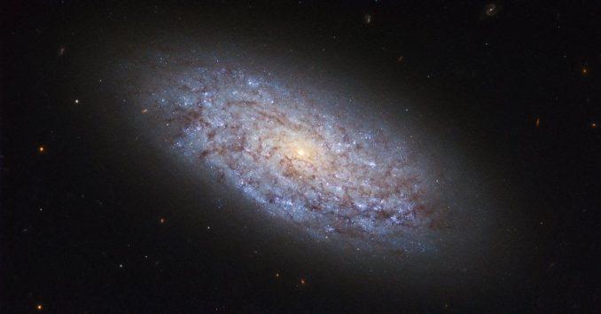 NGC 5949, aufgenommen vom Weltraumteleskop Hubble. (Credit: ESA / Hubble & NASA)