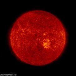 Die Sonne, aufgenommen vom Weltraumteleskop SOHO. (Credit: ESA / NASA Solar and Heliospheric Observatory (SOHO))