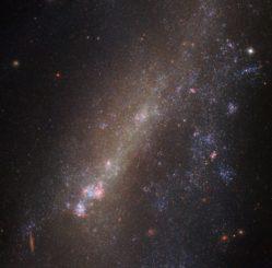 Die Galaxie IC 1727, aufgenommen vom Weltraumteleskop Hubble. (Credit: ESA / Hubble & NASA)