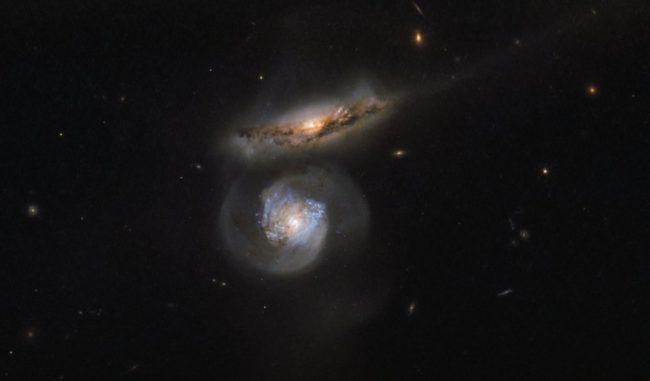 Die beiden Galaxien MCG+01-38-004 (oben) und MCG+01-38-005 (unten), aufgenommen vom Weltraumteleskop Hubble. (Credit: ESA / Hubble & NASA)