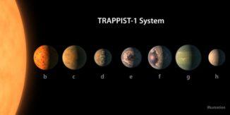 Größenvergleich der sieben Planeten im System TRAPPIST-1 (Abstände nicht maßstabsgerecht). Die Oberflächen sind künstlerische Illustrationen mit potenziellen Merkmalen wie Wasser, Eis und Atmosphären. (Credit: NASA / R. Hurt / T. Pyle)