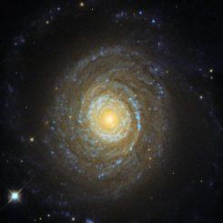NGC 6753, aufgenommen vom Weltraumteleskop Hubble. (Credits: ESA / Hubble & NASA; Acknowledgement: Judy Schmidt)
