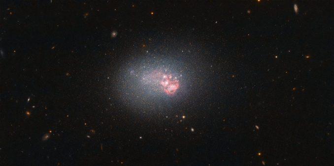 ESO 553-46, aufgenommen vom Weltraumteleskop Hubble. (Credits: ESA / Hubble & NASA)
