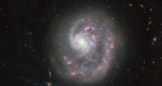 Hubble-Aufnahme der Zwerggalaxie NGC 4625. (Credits: ESA / Hubble & NASA)