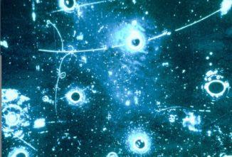 Dieses Ereignis zeigt die im 1200-Liter-Tank der Gargamelle-Blasenkammer hinterlassenen Spuren, die zur ersten Bestätigung neutraler Ströme führten. (Credit: CERN)