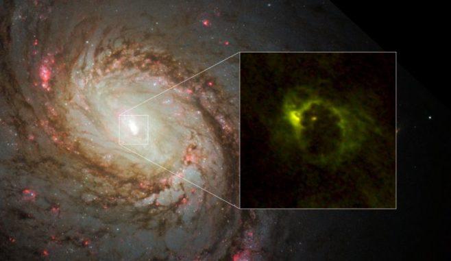 Die Zentralregion der Spiralgalaxie M77. Das Hubble-Teleskop fotografierte die Verteilung der Sterne. ALMA enthüllte die Verteilung des Gases direkt im Zentrum der Galaxie und fand eine hufeisenförmige Struktur mit einem Radius von 700 Lichtjahren und eine zentrale, kompakte Komponente mit 20 Lichtjahren Radius. Letztere ist der Gastorus um den aktiven galaktischen Kern. Rot markiert sind Emissionen von Aldehydionen (HCO+) und Grün kennzeichnet Emissionen von Cyanwasserstoff. (Credit: ALMA (ESO / NAOJ / NRAO), Imanishi et al., NASA / ESA Hubble Space Telescope and A. van der Hoeven)