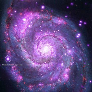 Ein Bild der Whirlpool-Galaxie M51, basierend auf Röntgendaten von Chandra (violett) und optischen Daten von Hubble (rot, grün, blau). Die Position der ultraleuchtkräftigen Röntgenquelle ist markiert. (Credit: NASA / CXC / Caltech / M.Brightman et al.; Optical: NASA / STScI)