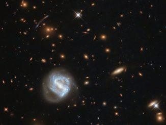 Hubble-Aufnahme des Galaxienhaufens SDSS J0333+0651. (Credit: ESA / Hubble & NASA)