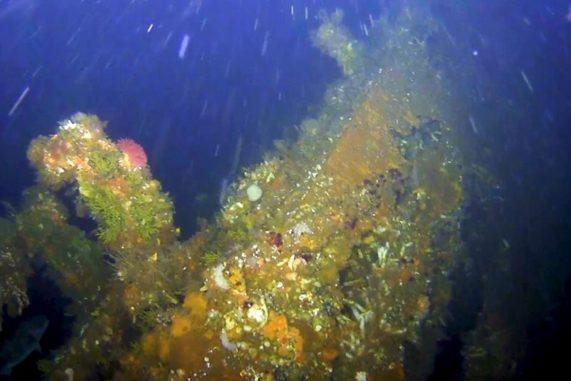 Das gesunkene Wrack des Achterschiffs der USS Abner Read vor der Insel Kiska. (Credits: Scripps Institution of Oceanography at UCSan Diego)