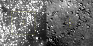 Das linke Bild ist ein Komposit aus 48 Aufnahmen der LORRI-Kamera. Die vorhergesagte Position von Ultima Thule ist im Zentrum des gelben Rahmens (markiert durch das Kreuz). Das Bild rechts ist ein vergrößerter und bearbeiteter Ausschnitt der Region innerhalb des gelben Rahmens und lässt Ultima Thule eindeutig erkennen. (Credits: NASA / JHUAPL / SwRI)