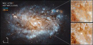 Hubble-Aufnahmen der Supernova SN 2012au in der Galaxie NGC 4790. (Credits: NASA, ESA, and J. DePasquale (STScI))