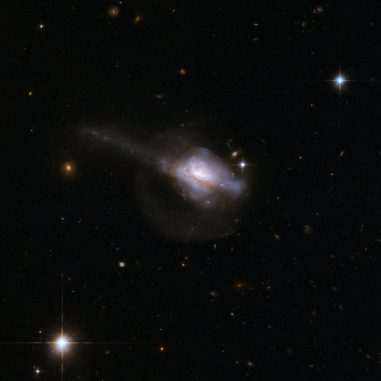 Die Galaxie UGC 5101 enthält einen aktiven galaktischen Kern. Diese Hubble-Aufnahme zeigt links einen Gezeitenschweif, der dafür spricht, dass die Galaxie tatsächlich aus zwei verschmelzenden Galaxien besteht. (Credits: NASA, ESA, the Hubble Heritage Team; STScI / AURA) – ESA / Hubble Collaboration and A. Evans University of Virginia, Charlottesville / NRAO / Stony Brook University)