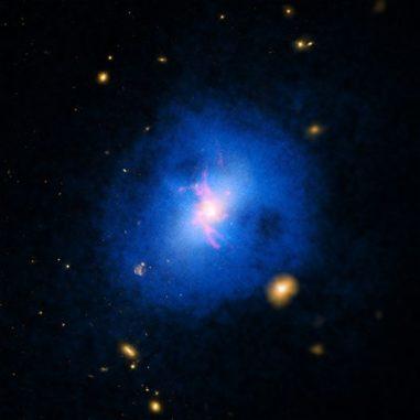 Ein Bild der Galaxie Abell 2597, basierend auf Röntgendaten (blau), Emissionen der Wasserstofflinie (rot) und optischen Daten (gelb). (Credits: X-ray: NASA / CXC / Michigan State Univ / G.Voit et al; Optical: NASA / STScI & DSS; H-alpha: Carnegie Obs. / Magellan / W.Baade Telescope / U.Maryland / M. McDonald)