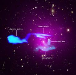 Abell 1033, bestehend aus zwei kollidierenden Galaxienhaufen. (Credits: X-ray: NASA / CXC / Leiden Univ. / F. de Gasperin et al; Optical: SDSS; Radio: LOFAR / ASTRON, NCRA / TIFR / GMRT)
