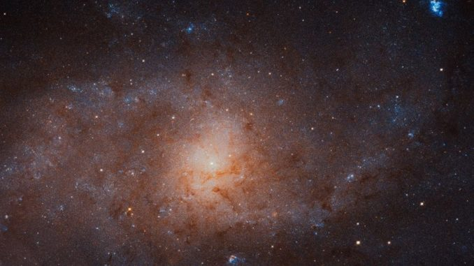Mosaikbild der Dreiecksgalaxie M33, aufgenommen vom Weltraumteleskop Hubble. (Credits: NASA, ESA, and M. Durbin, J. Dalcanton, and B. F. Williams (University of Washington))