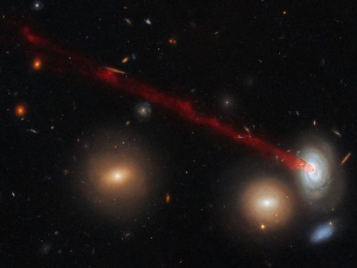 Hubble-Aufnahme des Gasschweifs der Spiralgalaxie D100. (Credits: ESA / Hubble & NASA, Cramer et al.)