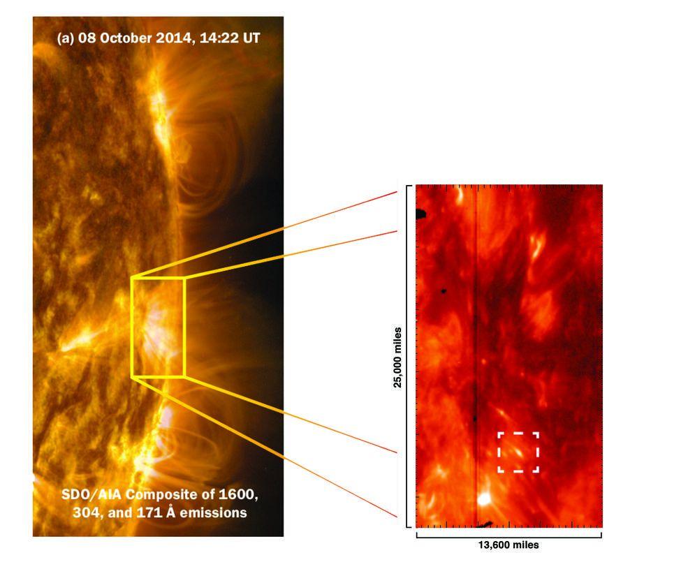 Die kaulquappenförmigen Pseudoschocks im weißen Kästchen entstammen hochgradig magnetischen Regionen auf der Sonnenoberfläche. (Credits: Abhishek Srivastava IIT (BHU) / Joy Ng, NASA's Goddard Space Flight Center)