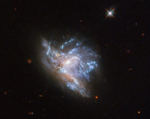 Hubble-Aufnahme des Galaxienpaars NGC 6052. (Credits: ESA / Hubble & NASA, A. Adamo et al.)