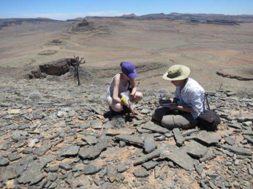 Wissenschaftler bei Feldstudien in Namibia. (Credits: Rachel Cook)