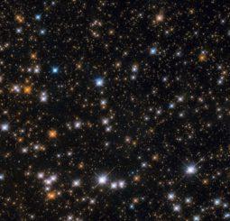 Hubble-Aufnahme von einem Teil des Wildentenhaufens Messier 11 (Credits: ESA / Hubble & NASA, P. Dobbie et al.)