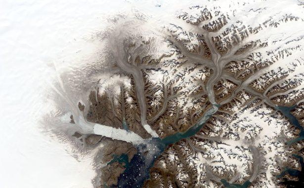 Gletscher im Südosten Grönlands, aufgenommen von Landsat 8 am 12. August 2019. (Credits: NASA / Christopher Shuman)