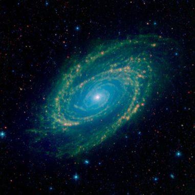 Spitzer-Aufnahme der Galaxie M81 in infraroten Wellenlängen. (Credits: NASA / JPL-Caltech)