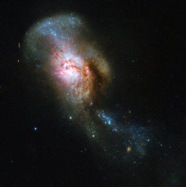 Hubble-Aufnahme des verschmelzenden Galaxienpaares NGC 4194. (Credits: ESA / Hubble & NASA, A. Adamo)