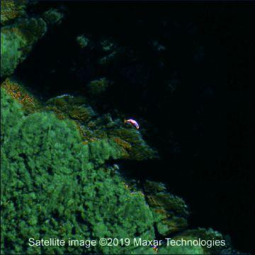 Ein gestrandeter Wal auf einem Satellitenbild. (Credits: Maxar Technologies / BAS)