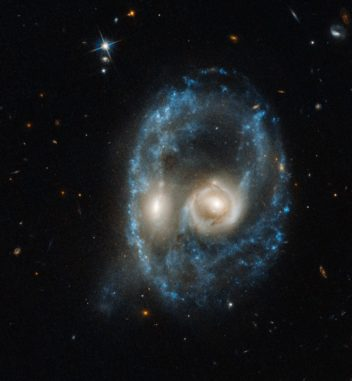 Hubble-Aufnahme des interagierenden Galaxienpaars Arp-Madore 2026-424. (Credits: NASA, ESA, and J. Dalcanton, B.F. Williams, and M. Durbin (University of Washington))