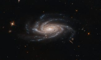 Hubble-Aufnahme der Spiralgalaxie NGC 2008. (Credit: ESA / Hubble & NASA, A. Bellini)