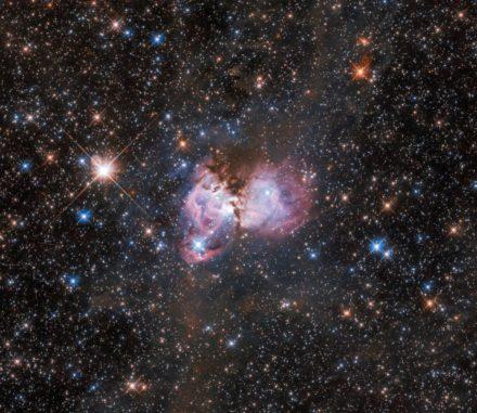 LHA 120-N 150, eine Substruktur des Tarantelnebels in der Großen Magellanschen Wolke. (Credits: ESA / Hubble, NASA, I. Stephens)