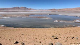 Die Quisquiro-Salzwüste in Südamerika repräsentiert eine Art Landschaft, die laut Forschern im Gale-Krater auf dem Mars existiert haben könnte. (Credits: Maksym Bocharov)