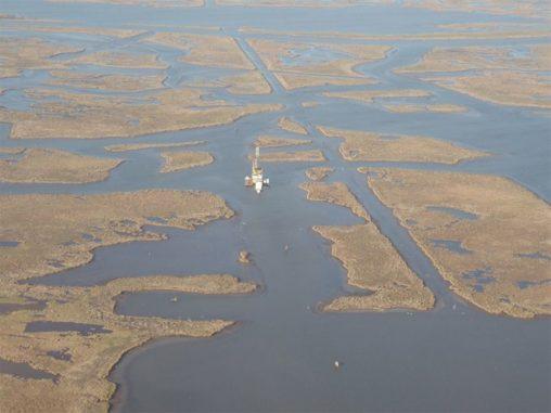 Salzsümpfe etwa 50 Kilometer südöstlich von New Orleans. (Credit: Photo by Torbjörn Törnqvist)