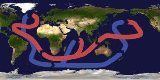 Schematische Darstellung des globalen Förderbandes. (Credits: Wikipedia / User: Brisbane / CC-BY-SA 3.0)
