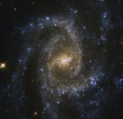 Hubble-Aufnahme der Spiralgalaxie NGC 2835. (Credits: ESA / Hubble & NASA, J. Lee, and the PHANGS-HST Team; Acknowledgement: Judy Schmidt (Geckzilla))
