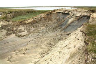 Ein Erdrutsch in der sibirischen Trundra. (Credits: Mariana Verdunen)