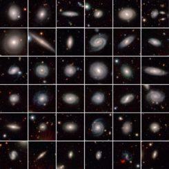 Eine Auswahl der 7.000 untersuchten Galaxien. (Credits: GAMA Survey Team, ICRAR / UWA)