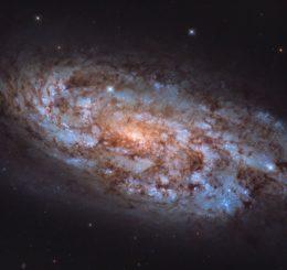 Die Starburst-Galaxie NGC 1792, aufgenommen vom Weltraumteleskop Hubble. (Credits: ESA / Hubble & NASA, J. LeeM; Acknowledgement: Leo Shatz)