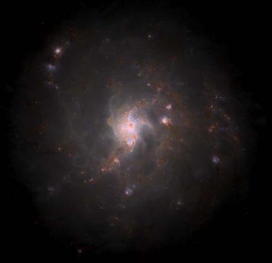 Die Milchstraßen-Galaxie als Computersimulation. (Credits: Kannan et al. 2020)