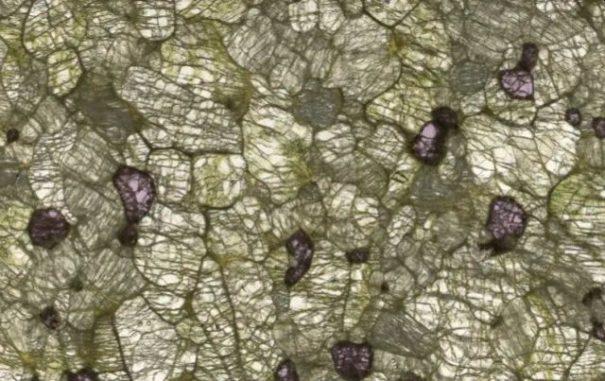 Eine Peridotit-Probe unter dem Mikroskop zeigt drei Hauptbestandteile: Olivin (grün), Orthopyroxen (graugrün) und Garnet (pink). (Credit: Dr. Emma Tomlinson, Trinity College Dublin)