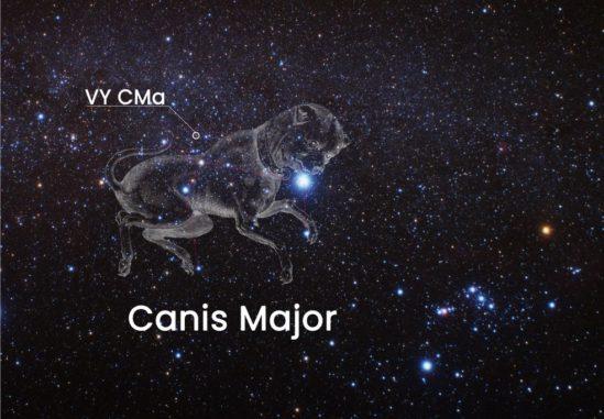 Dieses Bild zeigt die Position des Roten Hyperriesen VY Canis Majoris am Himmel. Er befindet sich im Sternbild Großer Hund, kann aber mit bloßem Auge nicht beobachtet werden. (Credits: NASA, ESA, and J. DePasquale (STScI) Acknowledgment: A. Fujii)