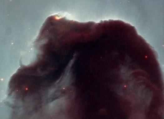 Ein Bild des Pferdekopfnebels im Sternbild Orion, aufgenommen in sichtbaren Wellenlängen. Der Staub der Dunkelwolke blockiert das Licht des hellen Nebels im Hintergrund. (Credits: NASA / Hubble, and Nigel A. Sharp, NOAO / AURA / NSF)