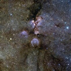 Infrarotbild des Katzenpfotennebels NGC 6334, einer riesigen, sternbildenden Molekülwolke. (Credits: ESO / J. Emerson / VISTA)
