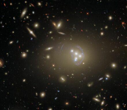 Hubble-Aufnahme des Galaxienhaufens Abell 3827. (Credit: ESA / Hubble & NASA, R. Massey)