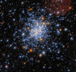Hubble-Aufnahme des Sternhaufens NGC 330. (Credits: ESA / Hubble & NASA, J. Kalirai, A. Milone)