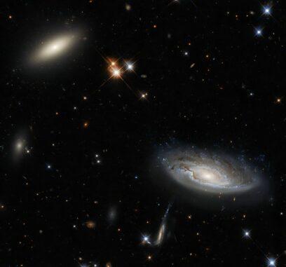 Ein Teil des Perseus-Galaxienhaufens, aufgenommen vom Weltraumteleskop Hubble. (Credits: ESA / Hubble & NASA, W. Harris; Acknowledgement: L. Shatz)