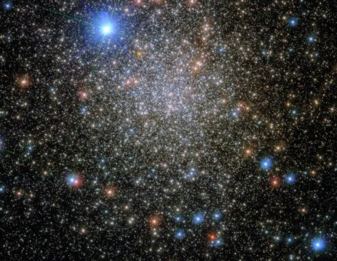 Hubble-Aufnahme des Kugelsternhaufens NGC 6380. (Credit: ESA / Hubble & NASA, E. Noyola)