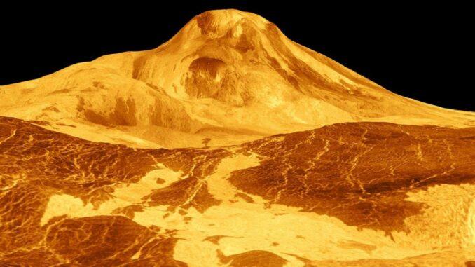 Ein Bild des Vulkans Maat Mons auf der Venus, basierend auf Radardaten der Raumsonde Magellan. (Credits: NASA / JPL)